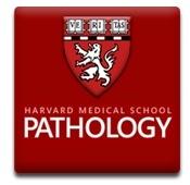 Harvard Medical School Department of Pathology