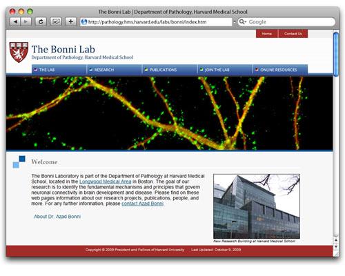The Bonni Lab - Homepage Design