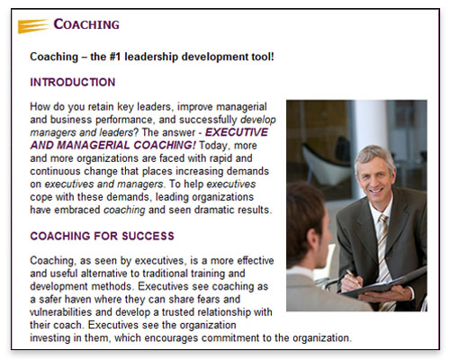 Excalibur Consulting - Coaching Page Close-up