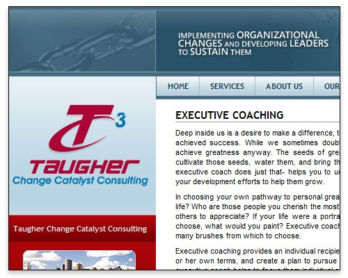 Taugher Change Catalyst Consulting - Executive Coaching Page Design